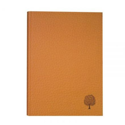 Aisling Ruled A5 Softback Velvet Finish Notebooks 320 Page Brown